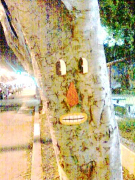 rhiannon-tree